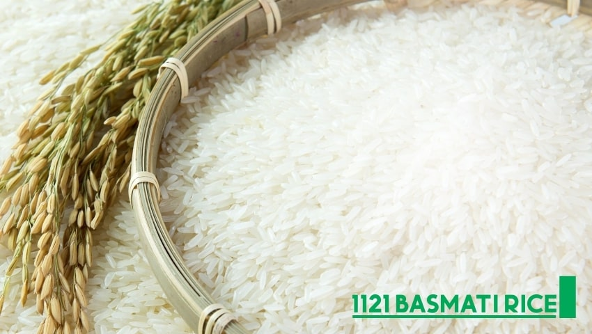 1121 Basmati Rice - The longest Rice and Its Different Types