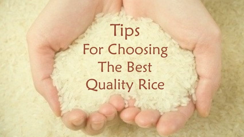 Tips for Choosing the best quality Rice