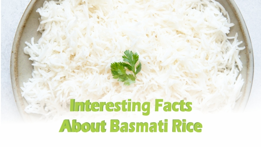 Rice-Company-in-India.jpg