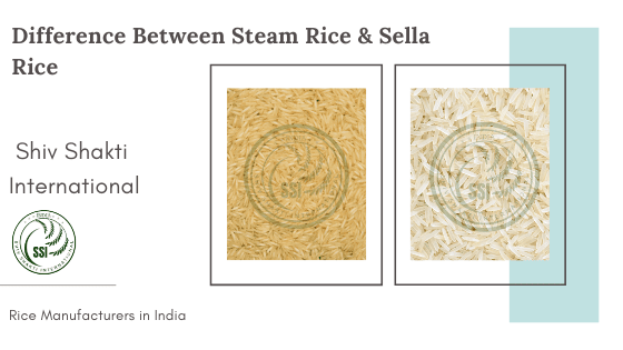 difference-between-sella&steam.png